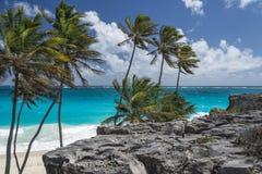 底下海湾,巴巴多斯,印度西部 免版税图库摄影