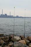 底下渔白鲑在赫尔辛基 免版税库存照片
