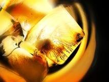 底层求玻璃冰光顶视图威士忌酒的立方 免版税库存照片