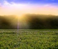 底层镶有钻石的旭日形首饰的日落日出 免版税图库摄影