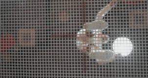 底视图通过净体操运动员来到在白色衣裳的绷床 股票录像