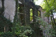废墟前面 库存图片
