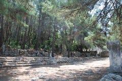 废墟和废墟在土耳其的森林的绿色植被中被保存在安塔利亚附近的 库存照片