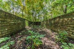废墟在大城市国家公园在巴拿马市 免版税图库摄影