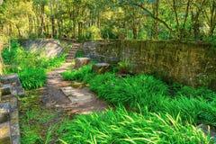 废墟在森林里,采矿行动的遗骸 免版税库存图片