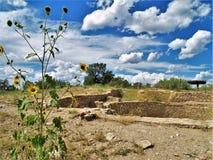 废墟在Anasazi遗产中心 库存照片