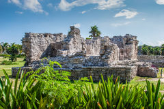 废墟在Tulum,墨西哥 图库摄影