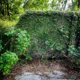 废墟墙壁 库存照片