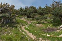 废墟惊人的看法在Aliki考古学站点, Thassos海岛,希腊 免版税库存图片