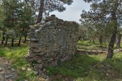 废墟看法在Aliki, Thassos海岛、东部马其顿和色雷斯,希腊考古学站点  免版税库存照片