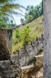 废墟,一旦盛大豪宅或小屋在海岛布巴克上在几内亚比绍,西非的Bijagos群岛 库存照片