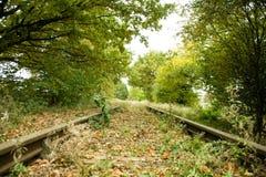 废弃的railtrackovergrown 免版税图库摄影