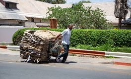 废捡取器在博茨瓦纳 免版税库存照片