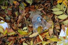 废物本质上 库存照片