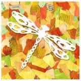 废纸抽象背景拼贴画与蜻蜓的图象的 印刷品,包裹,样式,封皮设计, 免版税图库摄影
