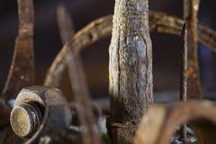 废金属森林 库存图片