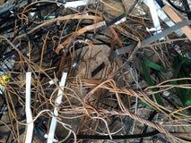 废金属 库存图片