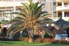 度假区的风景 免版税库存照片