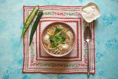座间、罗马尼亚人和摩尔达维亚人鸡汤用面条 传统宿酒汤供食用辣椒和酸性稀奶油 图库摄影