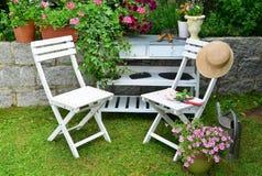 庭院五颜六色的花 免版税库存图片