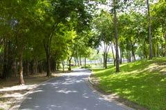 庭院公园 库存照片