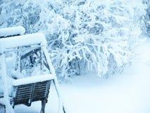 庭院冬天视图 免版税库存图片
