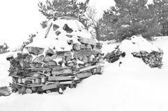 庭院冬天 库存照片