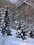 庭院冬天 免版税库存图片