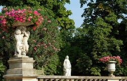 庭院卢森堡巴黎 库存照片