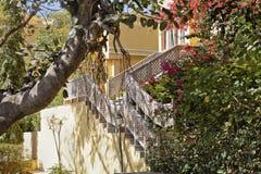 庭院印度平静的拉贾斯坦 免版税库存图片