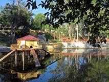 庭院和公园亲王D pedro 免版税库存图片