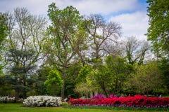 庭院和树在舍伍德庭院在吉尔福德停放, Baltimo 免版税图库摄影