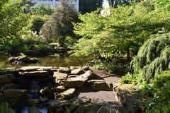 庭院和池塘在老主要附近 免版税图库摄影