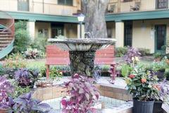 庭院喷泉由花盘旋了并且分类了植物 库存图片