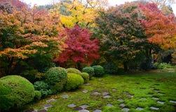 庭院在京都日本 库存图片