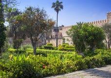 庭院在拉巴特,摩洛哥 库存照片