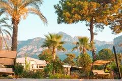 庭院在有摇摆的山区度假村 免版税图库摄影
