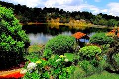 庭院在湖 库存照片