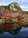 庭院在秋天 免版税库存图片