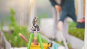 庭院在背景女孩运转的犁耙剪,夏日 股票录像