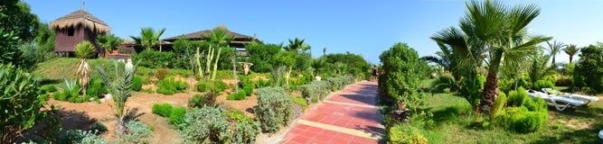 庭院在豪华旅游胜地旅馆里 免版税图库摄影