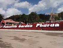 庭院在Phurua 免版税库存照片