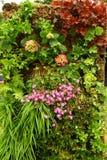 庭院垂直 图库摄影