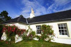 庭院家庭住宅 免版税图库摄影