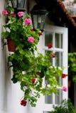 庭院家庭风景 图库摄影