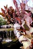 庭院小的瀑布 免版税库存照片