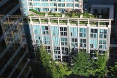 庭院屋顶顶层 免版税库存图片