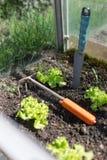 庭院工作自一间小的温室 免版税库存图片