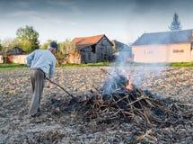 庭院工作 农夫燃烧干分支 免版税图库摄影
