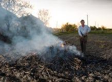 庭院工作 农夫燃烧干分支 库存图片